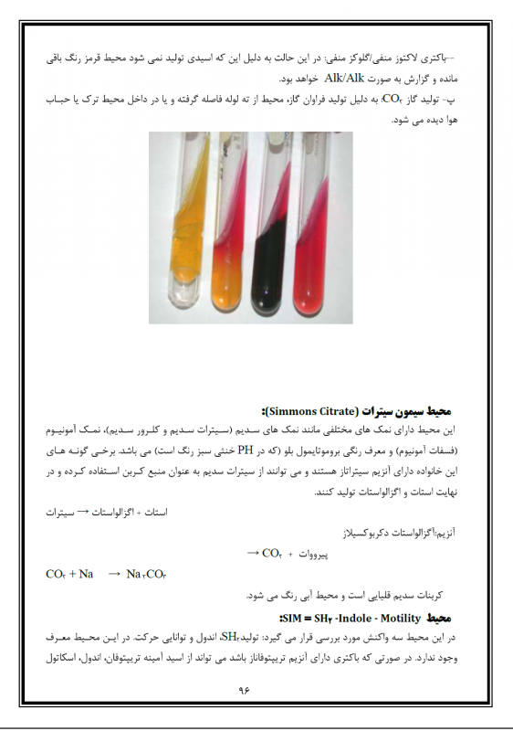microb lab1