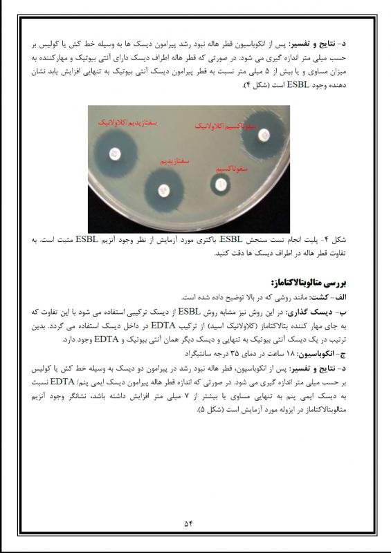 microb lab2